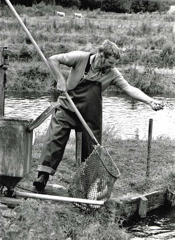 fiskedamme-tolstrup