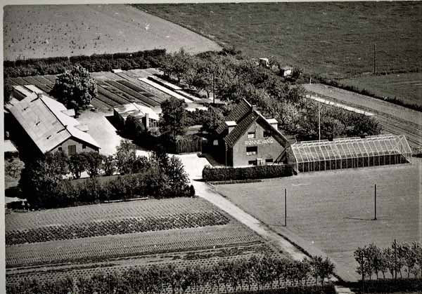 gedved-gartneriet-roennevang